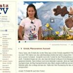 Mehr als Ersatz: Ein Web-TV-Magazin bringt frisches Infotainment auf die Mattscheibe