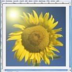 GIMP: Nachträglich Sonnenstrahlen in ein Foto einbauen