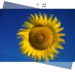 Microsoft Word 2007-2010: Bild kippen/drehen