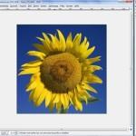 Kostenloses Bild-Bearbeitungs-Programm: GIMP